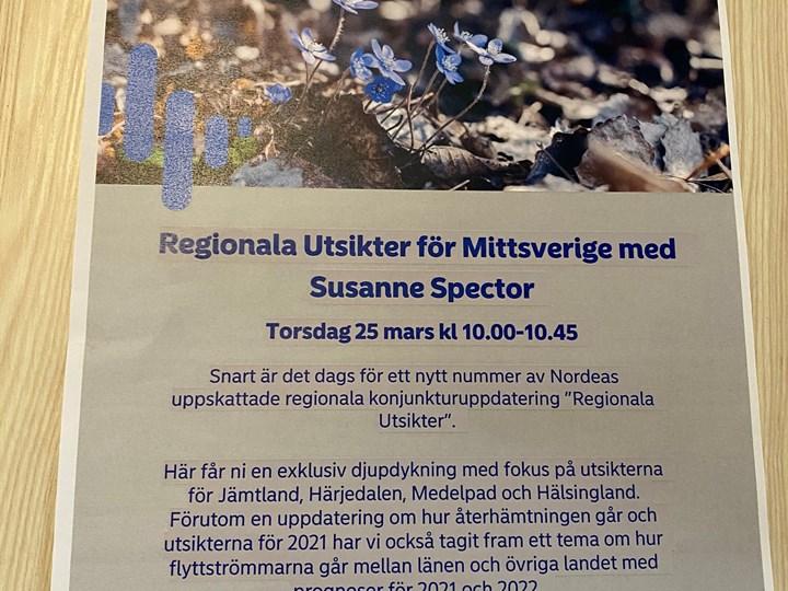 Regionala Utsikter för Mittsverige  - Susanne Spector Nordea